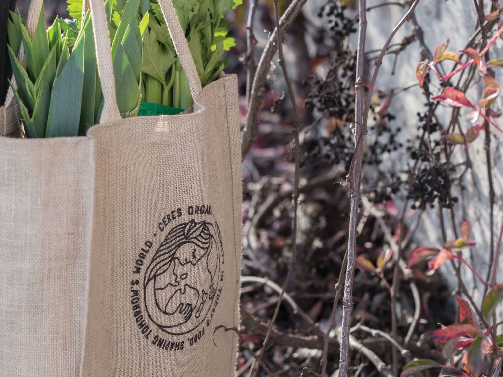 Reusable Bag Reduce Your Waste